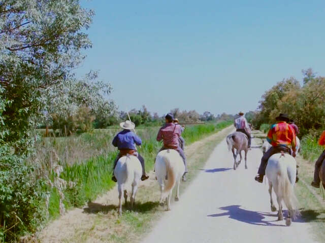 Video: Meet a Cowboy... in France