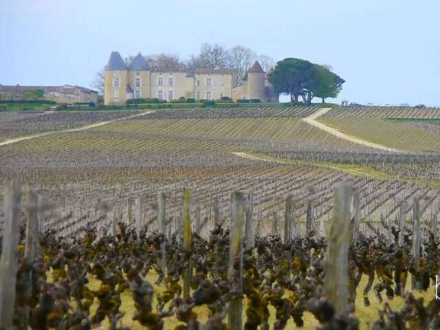 A Wine River Cruise in Bordeaux on Uniworld