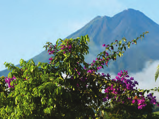 CRUISENET TOURS & TRAVEL PRESENTS NATURAL WONDERS OF COSTA RICA WITH GUATEMALA & GUANACASTE