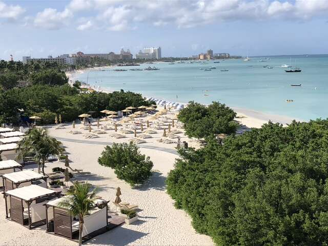 Top Hotels in Aruba for Families, Couples, and All Budgets