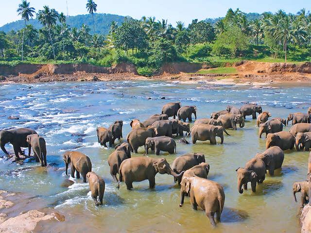 Classical Sri Lanka
