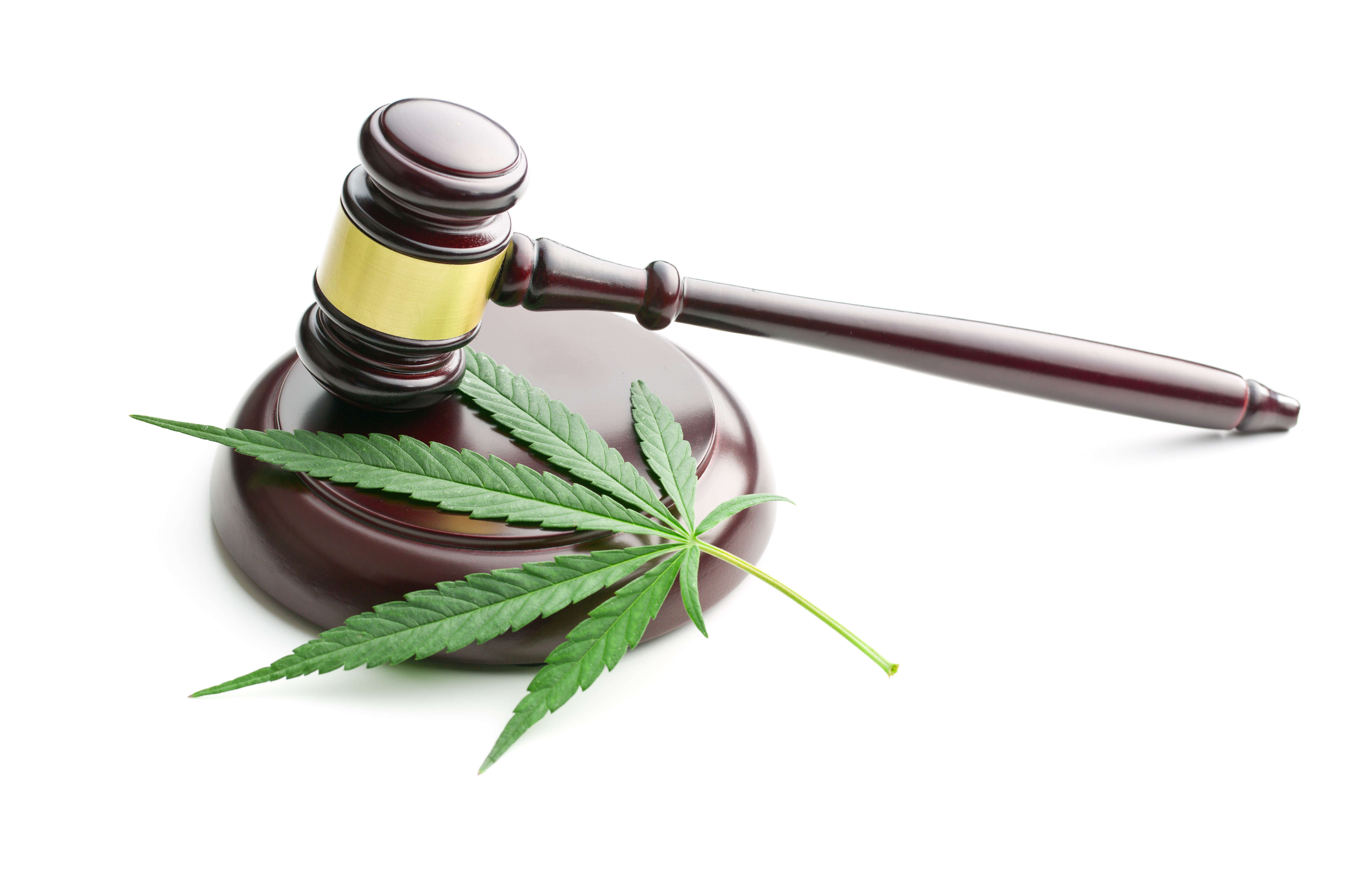 How New Cannabis Laws Pertain To Canadian Travellers