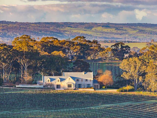 Wine and Wildlife of South Australia