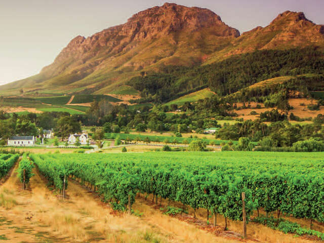 MEMORABLE FOOD & WINES OF SOUTH AFRICA