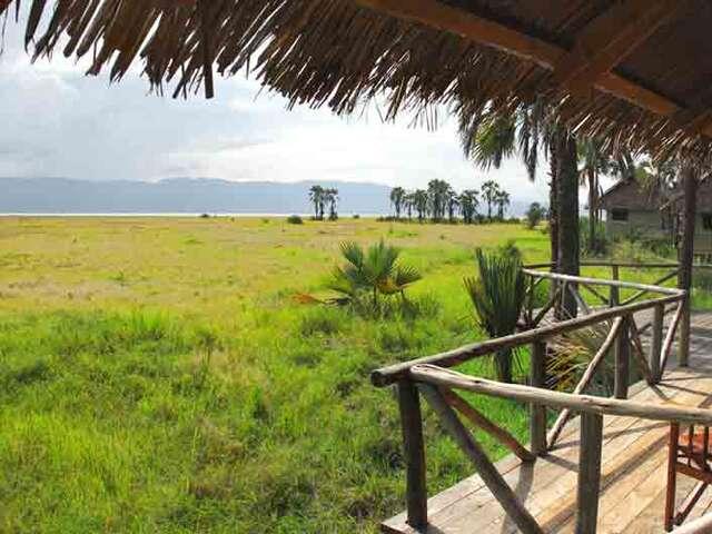 WILDLIFE ADVENTURE TO TANZANIA