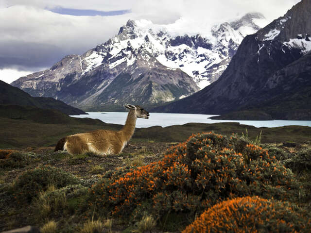 INFINITE PATAGONIA - BY PRIVATE CAR