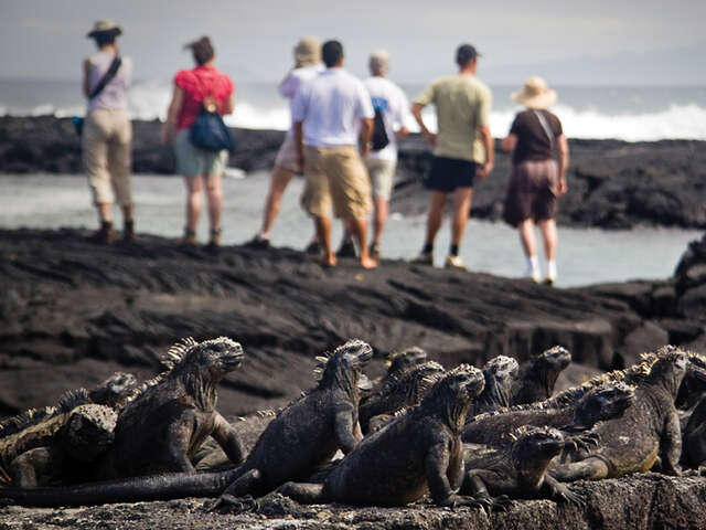 CRUISING THE GALAPAGOS ISLANDS-SANTA CRUZ II