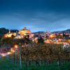 Italy Names Its First 'City of Wine'