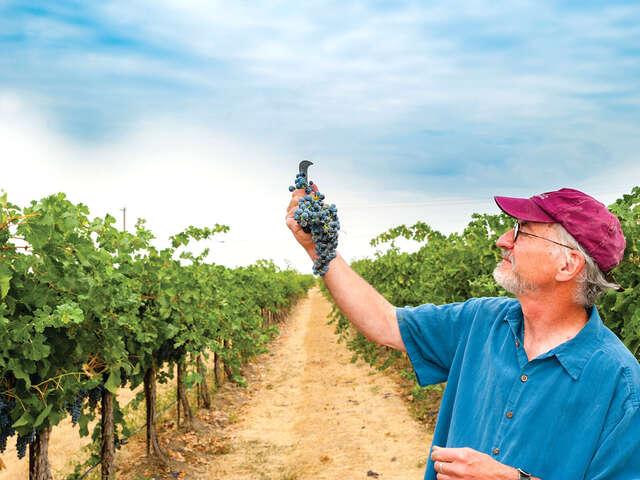Wines & Wonders of Northern Spain with Brian Carter Cellars