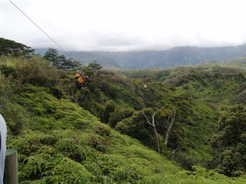 See Sites from Jurassic Park on an Outfitters Kauai Zipline Safari Tour