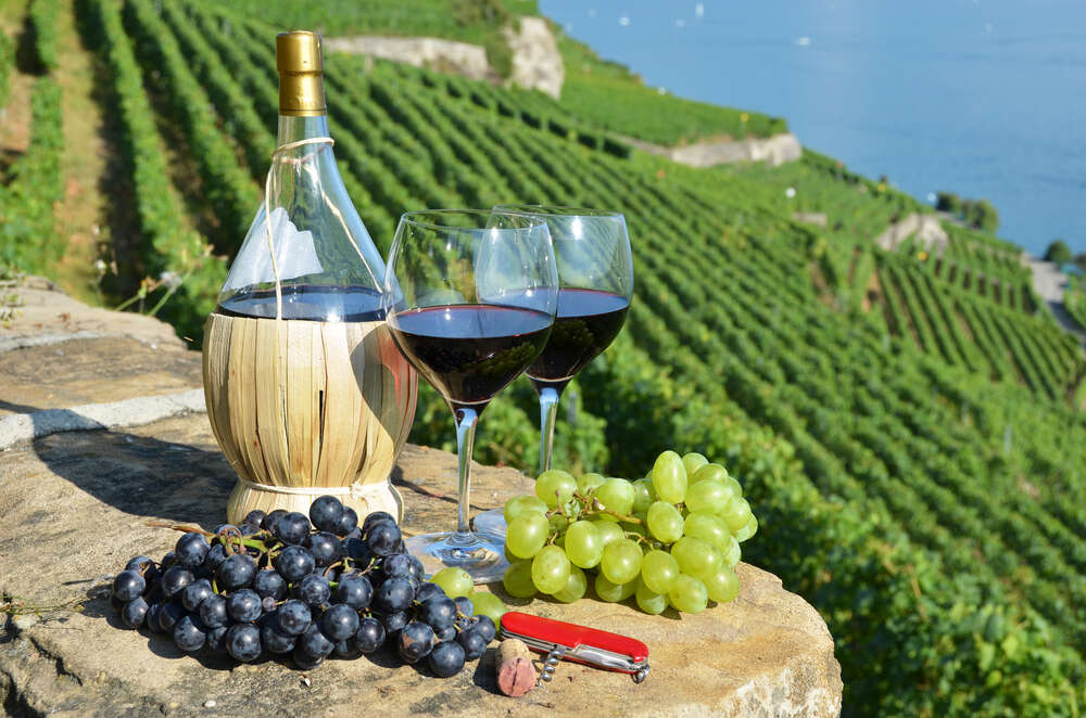 5 must visit wineries in Tuscany
