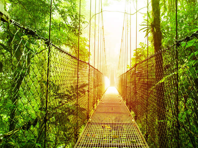 Villa Blanca Cloud Forest Resort in Costa Rica
