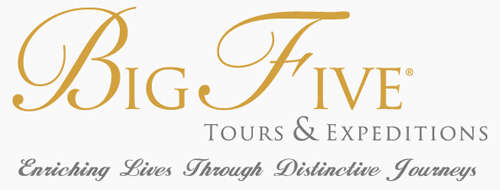 Big Five Tours & Expedition