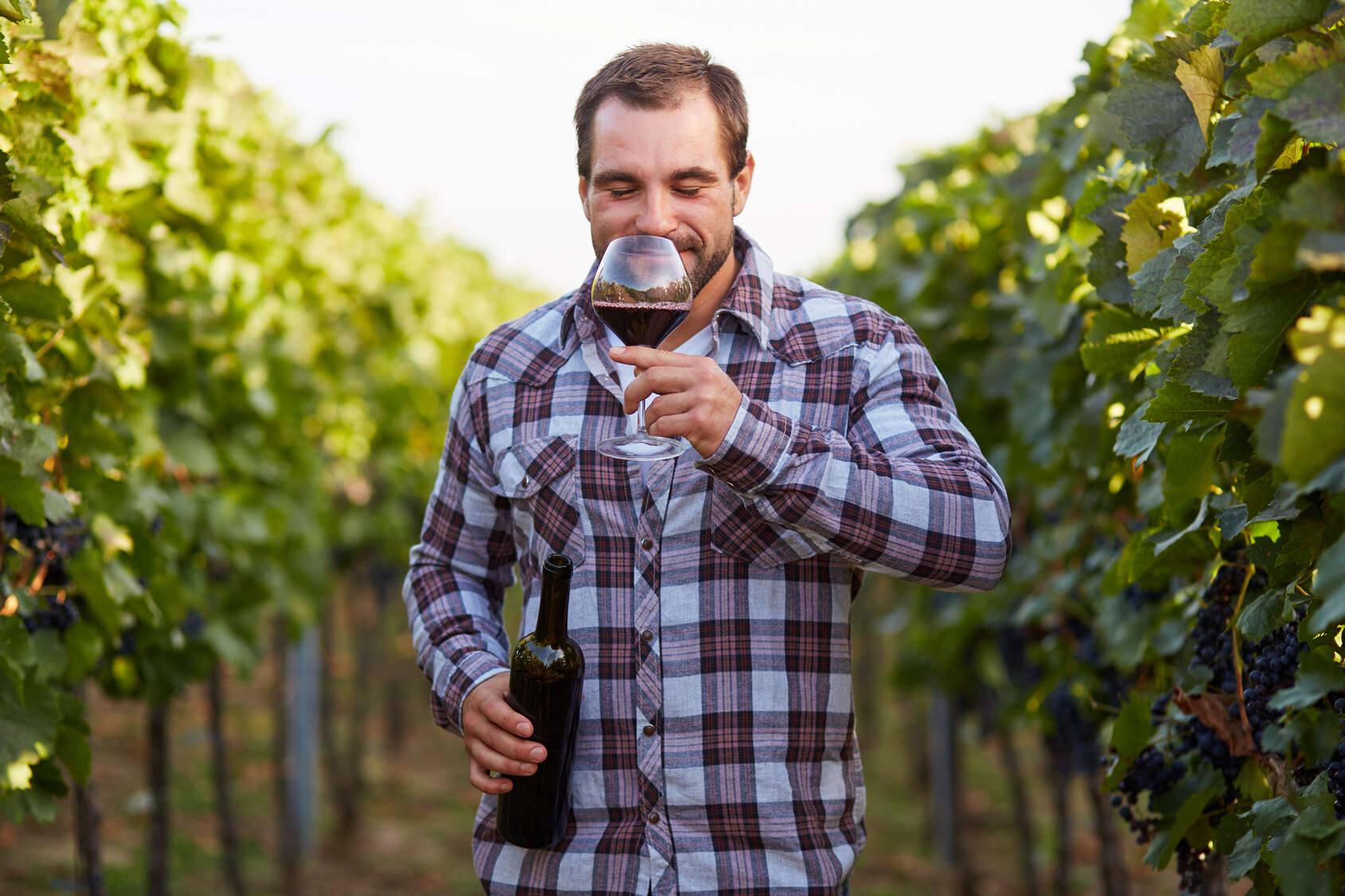 Speak Like The Locals While You Sip Portuguese Wines