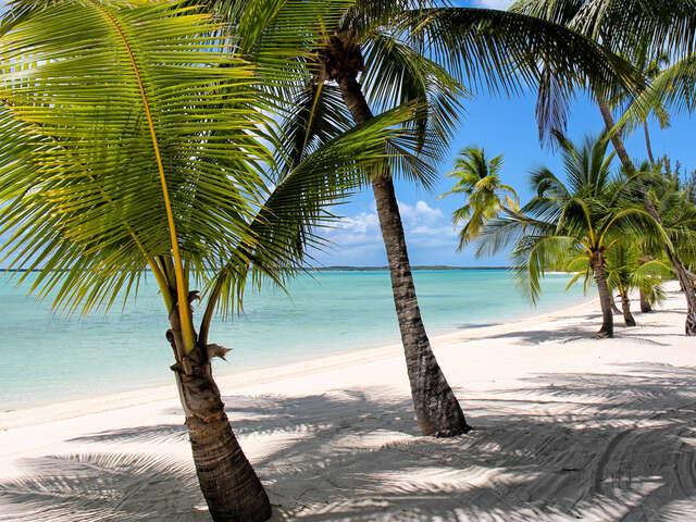 Caribbean + Bahamas + Bermuda