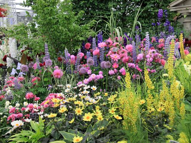 EUROPEAN AFFAIR WITH CHELSEA FLOWER SHOW (SUMMER 2018)