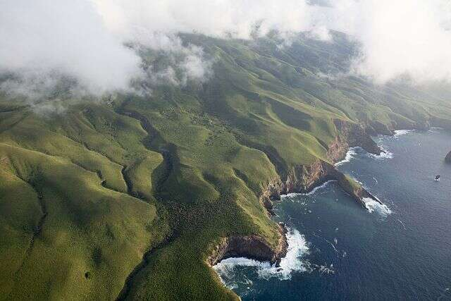 A New Marine Reserve in Mexico is the 'Galapagos of North America'