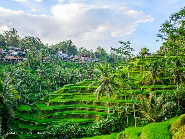 Beautiful Bali Group - November 1st, 2018
