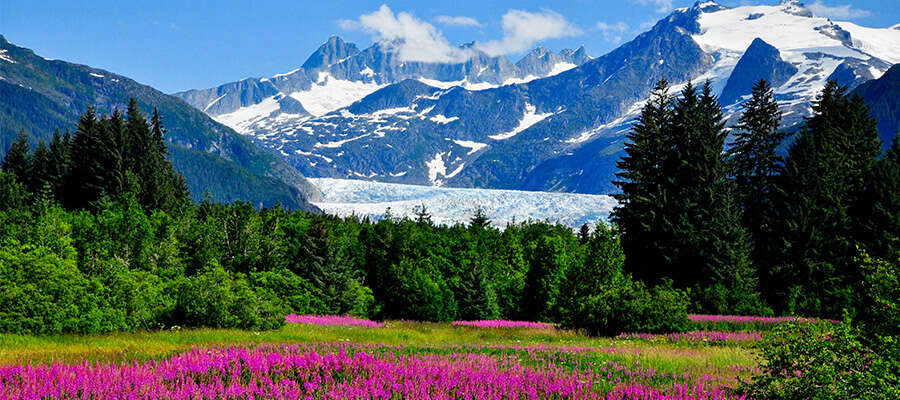 Top 10 Ranger Questions in Glacier Bay, Alaska