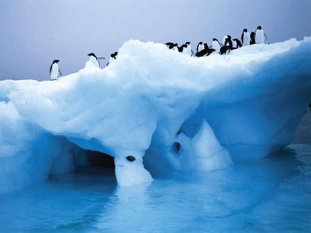 Journey to Antarctica – The White Continent