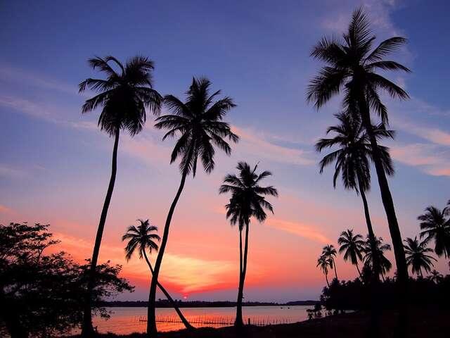 Affordable Wellness & Culture in Sri Lanka - Ayurva Traveller