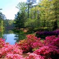 Callaway Gardens and Warm Springs