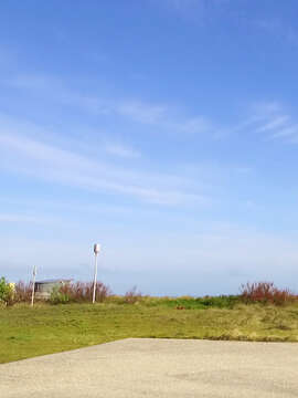 Memorials of WW2 Tour Including DDay Landing Beaches with Collette
