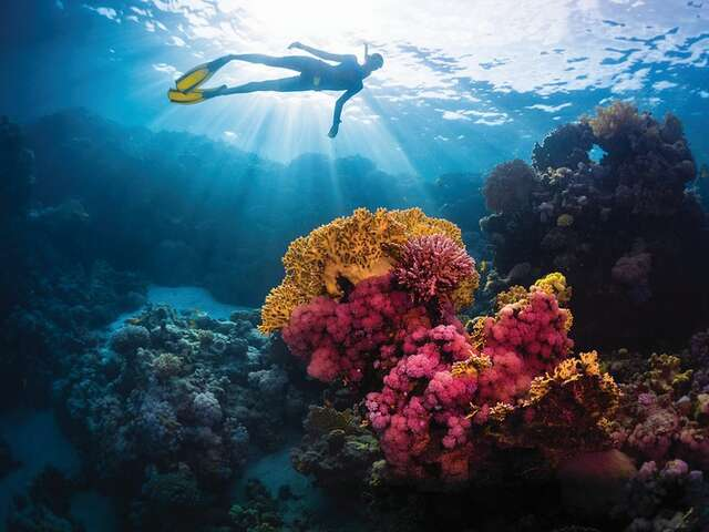 Goway - Sydney, Hawaii & Great Barrier Reef