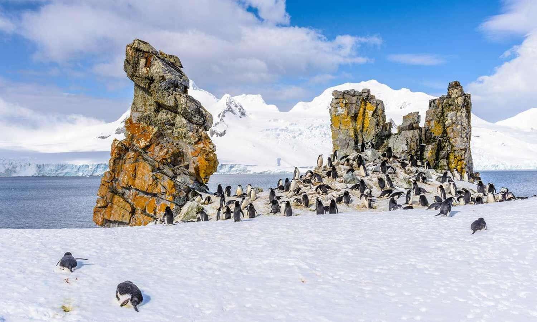 Antarctica Luxury Cruise