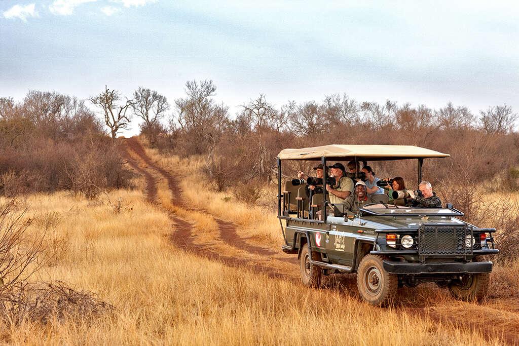 A Safari with Significance