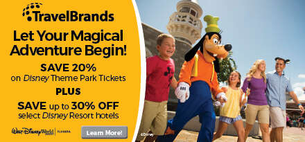 Disney TravelBrands Jan 2020