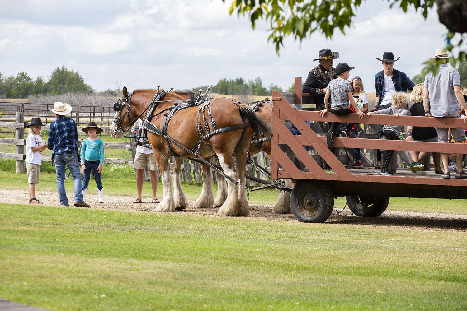 Autumn Hayride Escape at Champetre County