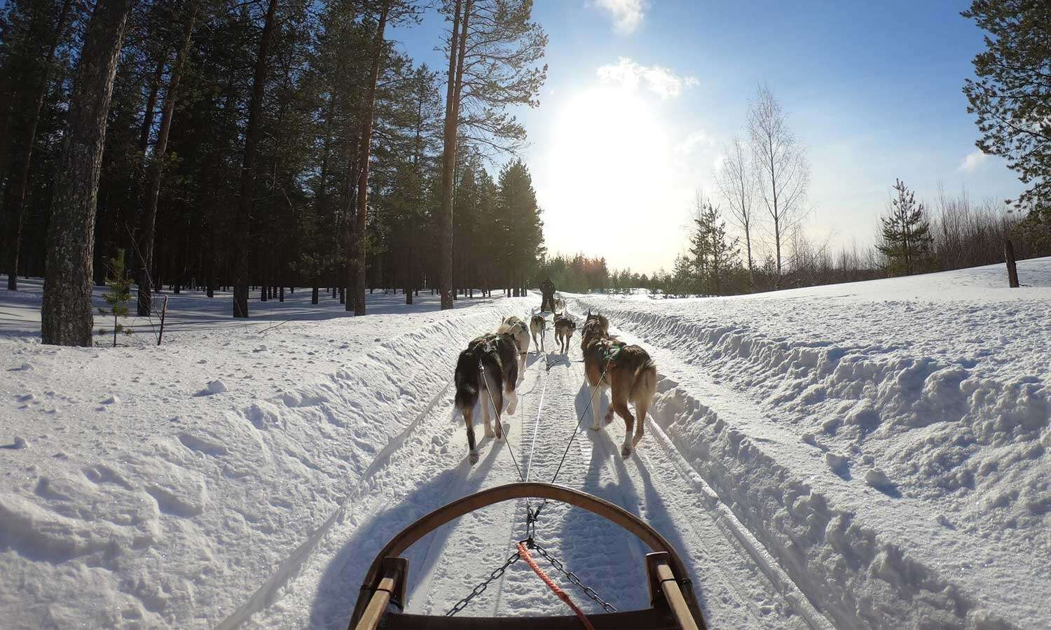 Top 3 Canadian Destinations for a Winter Vacation