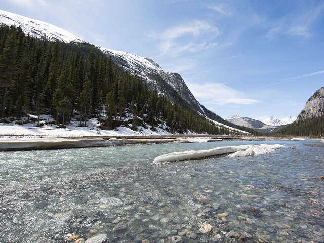 Collette - Save up to $350 Off Canadian Rockies by Train