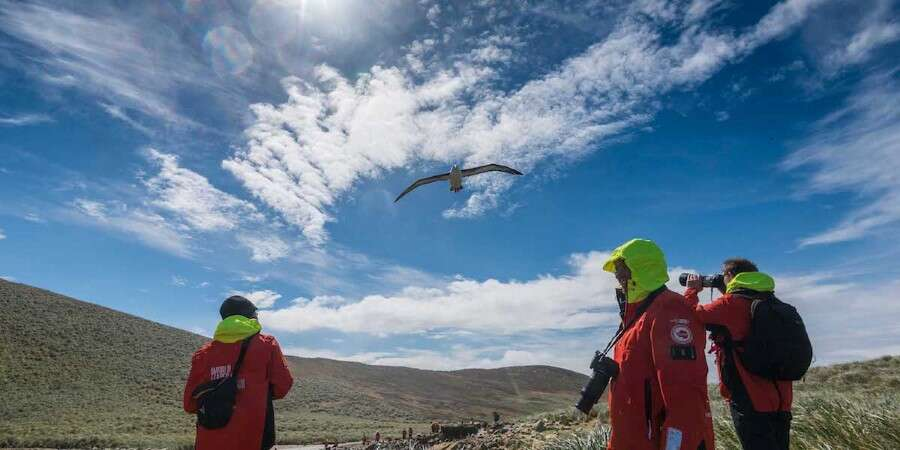 Where the Natural World Rules - The Falkland Islands