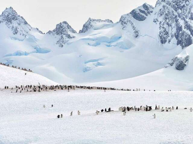 Antarctica – Highlights of the Frozen Continent (Itinerary 2)