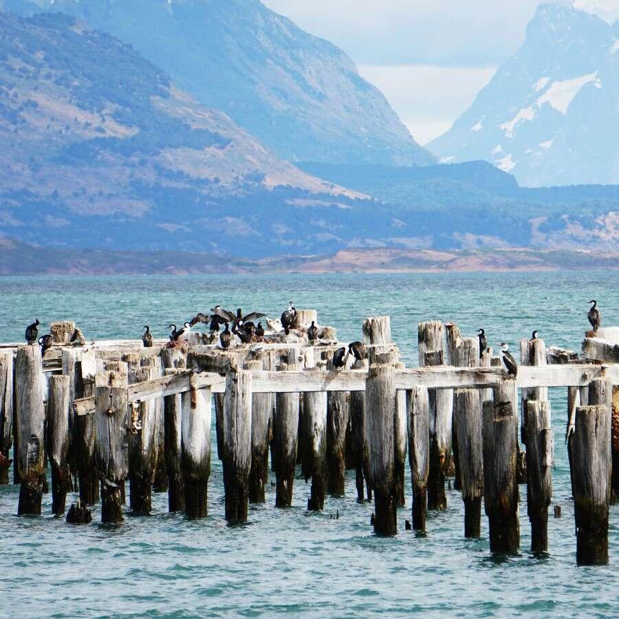 City of adventurers  - Puerto Natales