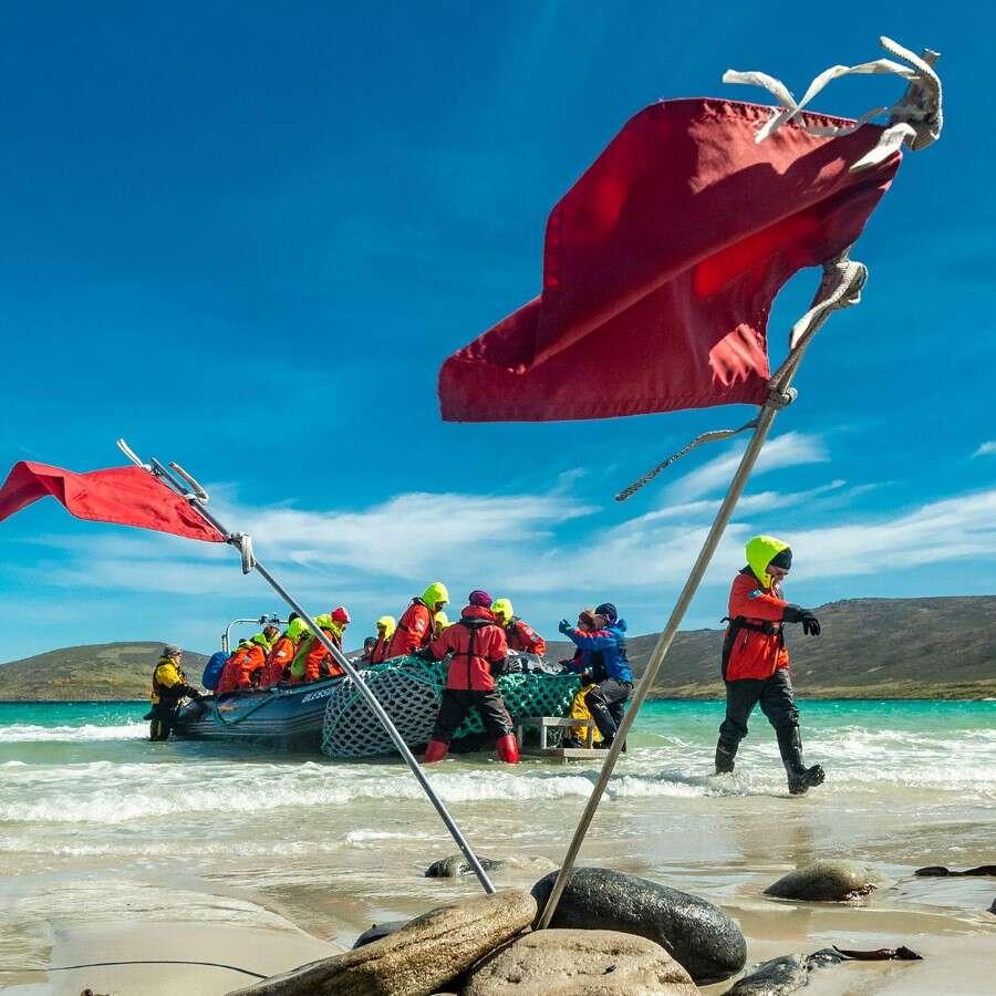Charming island life  - The Falkland Islands