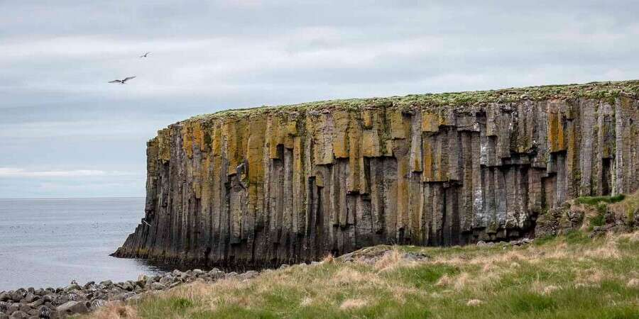 Step Across the Arctic Circle - Grimsey Island - Full Day