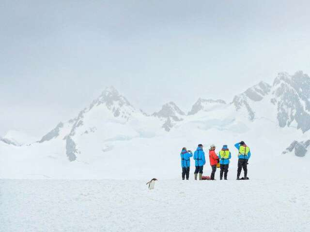 Chilean Fjords and Antarctica - White Christmas Adventure