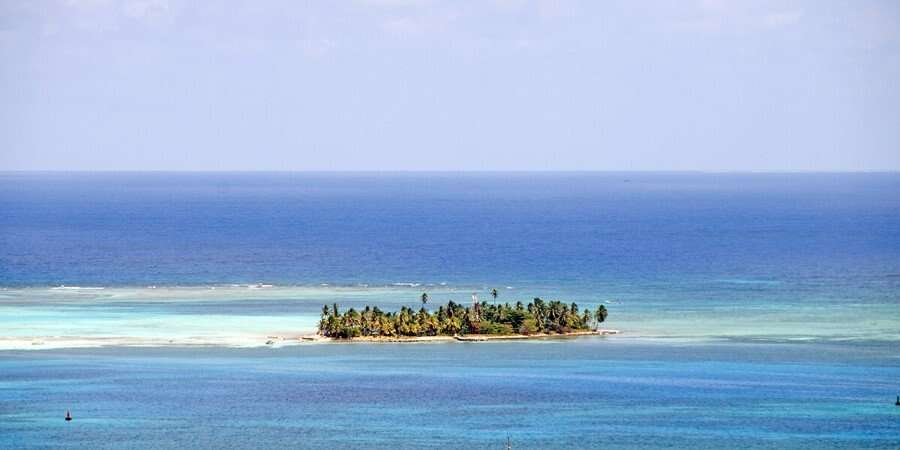 The Seahorse Island With Coconut Palms - San Andrés Island