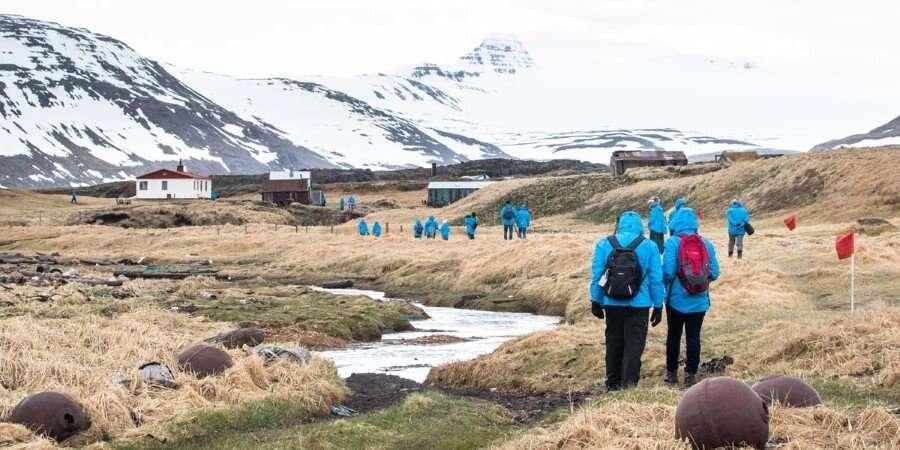 Stunning Sea Cliffs - Hornbjarg Cliff & Reykjafjörður