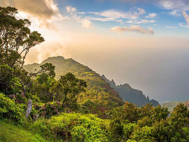 Spotlight on Hawaii