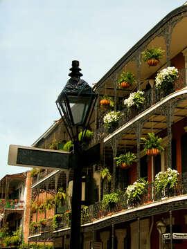 Spotlight on New Orleans