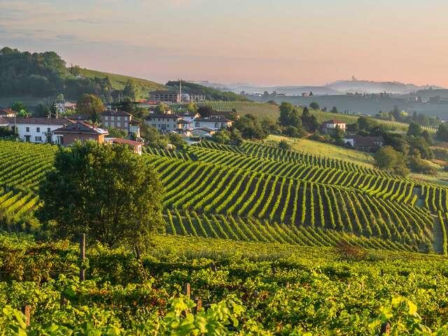 Walking Piedmont and the Barolo Wine Region