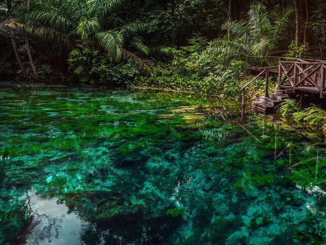 Explore Northern Brazil & Amazon