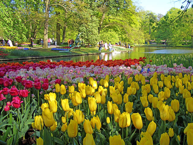 Springtime Tulip River Cruise featuring Dutch and Belgian Waterways